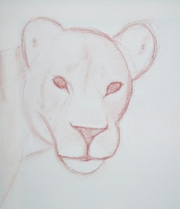 Lionne - sanguine